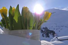 Romantic holidays at Hotel Perner in Obertauern, Austria. Salzburg, Winter Holidays, Austria, Skiing, Romantic, Winter Vacations, Ski, Romance Movies, Romances
