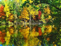 Reflection of Nature by Pure Michigan, via Flickr