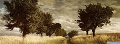 vintage trees facebook cover