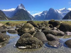 Travel in New Zealand for first timers: our tips and tricks on how to rock your trip, what to consider and things not to forget! Abel Tasman National Park, Bay Of Islands, Great Walks, Milford Sound, New Zealand Travel, South Island, Day Hike, Travel And Leisure, California Travel