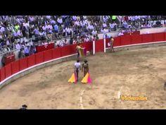 Un vídeo de español para extranjeros del nivel B2 para conocer argumentos a favor y en contra de las corridas de toros y poder expresar la propia opinión.    Consiga gratis la transcripción en :  http://www.videoele.com/B2_Opinar_sobre_los_toros.html