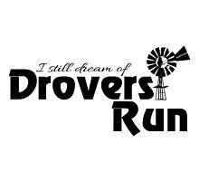 Still Dream of Drovers Run by Selma Djikic