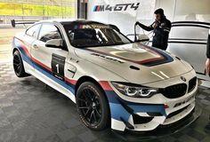 BMW F82 M4 GT4 white ///M stripe