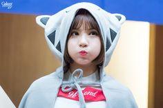 Girlfriend EUNHA 여자친구 은하 Black Clover Anime, G Friend, Kpop Girls, Squirrel, Stars, Cute, Gifs, Fashion, Moda