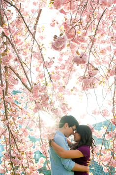 Cherry blossom engagement shoot