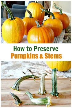 How to preserve pump