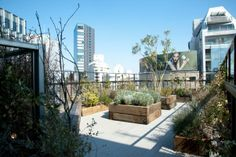 Shared living often means shared cost and lower quality. But in Tokyo, The Share, an innovative scheme offering modest personal spaces linke...