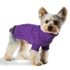Size #10 (small) Designer Pet Clothes, Violet Turtleneck Dog Sweater, Classic Aran Knit - http://www.thepuppy.org/size-10-small-designer-pet-clothes-violet-turtleneck-dog-sweater-classic-aran-knit/