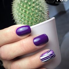 𝐂𝐚𝐜𝐭𝐮𝐬 𝐁𝐞𝐚𝐮𝐭𝐲 𝐋𝐨𝐮𝐧𝐠𝐞 (@cactus_beautylounge) • Instagram photos and videos Beauty Lounge, Cactus, Nail Polish, Photo And Video, Nails, Videos, Photos, Instagram, Finger Nails