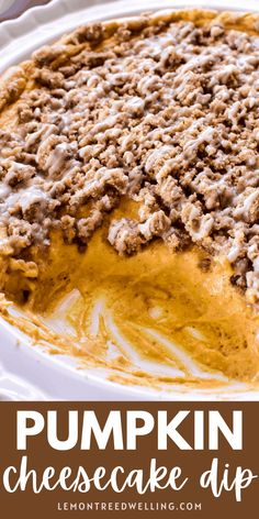 Ooey, gooey baked Pumpkin Cheesecake Dip with a crunchy streusel topping! This dip has all the flavors of pumpkin cheesecake in a fun and easy dip that's insanely addictive and perfect for fall! Thanksgiving Dinner Recipes, Fall Dessert Recipes, Great Desserts, Thanksgiving Holiday, Holiday Recipes, Christmas, Easy Casserole Recipes, Yummy Recipes, Keto Recipes