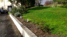 La Junnel News: The quest to obtain a beautiful garden at La Junne...