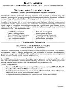 International Sales Resume Example
