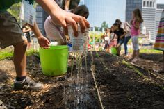 Kids planting seeds in urban farms, this one in Lower Manhattan. Our future.
