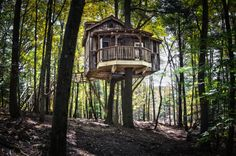 These Unbelievable Treehouses In Ohio Will Have Your Inner Child Jumping For Joy