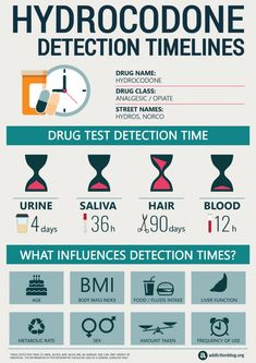 Wondering how benzodiazepine is metabolized and appears on a drug test? This infographic sheds light on different timelines for benzodiazepine detection. Drug Withdrawal, Substance Abuse Counseling, Nicotine Addiction, Timeline Infographic, Addiction Recovery, Addiction Therapy, Addiction Help, Drug Test, Health Care