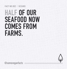 Some Vegan Facts - Fact 002. Source...