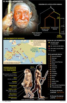 The world of the Neanderthal, Infographic by Ricard Gracia | El Periodico