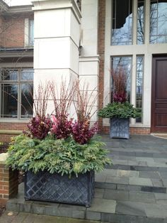 winter-pots with plum eucalyptus mixed with copper from Detroit Garden Works. Outdoor Planters, Flower Planters, Garden Planters, Flower Pots, Christmas Planters, Christmas Centerpieces, Christmas Stuff, Winter Container Gardening, Winter Planter