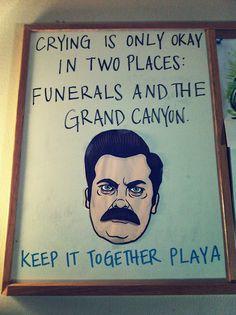 I love Ron Swanson!