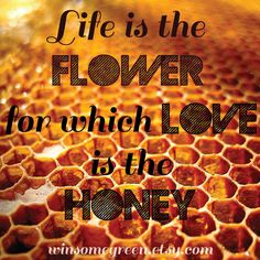 Love is the Honey #quote #love