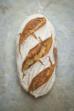 Corn sourdough bread