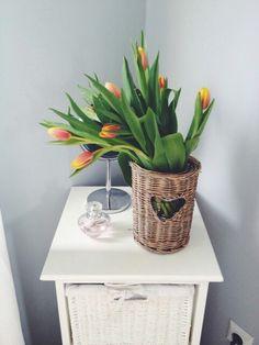 Wiosna....