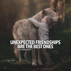 Positive Quotes : Unexpected friendships are the best. - Hall Of Quotes Wolf Quotes, New Quotes, Girl Quotes, Wisdom Quotes, True Quotes, Funny Quotes, Inspirational Quotes, Girl Best Friend Quotes, Daily Quotes