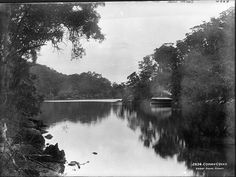 Cowan Creek with houseboat (ca. 1900), Kur-ring-gai Chase National Park, Sydney Australia via Powerhouse Museum (Flickr).