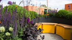 The Sir Simon Milton Foundation Urban Connections Garden. Designed by Lee Bestall. RHS Chelsea Flower Show 2016 Chelsea Flower Show, Design Blog, Garden Structures, The Hamptons, Deco, Garden Design, Flora, Foundation, Planters