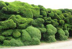 cloud hedge by stephen w morris, via Flickr