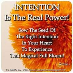 """""""INTENTION is the Real Power! Sow the seed of the right intention in your heart to experience that magical full bloom!"""" ©Jyotika Rajput Mehra Quotes & Photography 