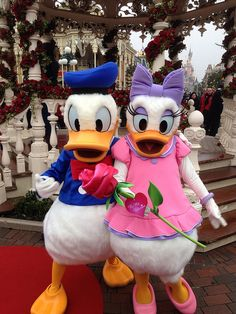 Donald and  katrien