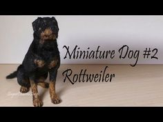 Polymer Clay Tutorial; Miniature Dog #2; Rottweiler - YouTube  sugarcharmshop
