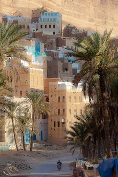 beautiful palaces in a village in wadi doan, the tribal region of Hadramawt, northeast  Yemen by anthony pappone photographer, via Flickr