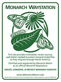 Visit Willowbrook Wildlife Center's Monarch Waystation to see a variety of milkweed plants that support the monarch butterfly and caterpillar. Butterfly Garden Plants, Hummingbird Garden, Garden Club, Monarch Butterfly, Butterfly Food, Simple Butterfly, Garden Projects, Garden Ideas, Garden Tools