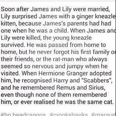 this is really giving me the chills. at least i know why crookshanks was so attracted to the 3 and hated wormtail