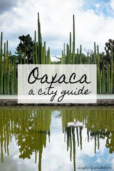 Oaxaca's beauty is unparalleled. This Oaxaca travel guide shows you where to eat, where to wander, and what to see. #oaxaca #mexico
