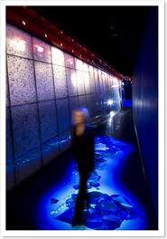 #interactivefloor interactive floor technology