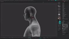 Posing Characters in ZBrush 4R6