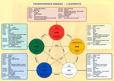 5 elements in Chinese medicine 5 Elements, Chinese Medicine, Feng Shui, Image Search, Pagan, Infographics, Celtic, Infographic, Info Graphics