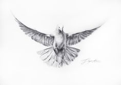 Hello dear friends, Can you kindly VOTE, if you like, on my drawing for a contest to win an e-course Drawing? On this link: http://drawingacademy.com/dove-totem The more LIKES I have more chances of winning, so do click on the buttons all the social networks below the image of the Dove, please... Share with your friends Thankfully, a thousand times grateful for your support. If you want to also leave a comment on the contest page, welcome