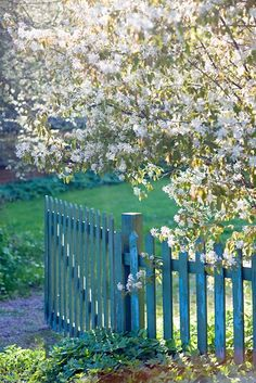 Incorporate pear blossom trees into your landscaping to create your own whimsical backyard oasis.