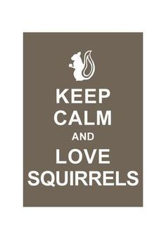 National Hug a Squirrel Day  www.pupscoutsusa.com