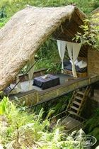 """Panchoran Retreat, Bali, Indonesia.  """"Voted one of the 10 best villas to rent in Bali, by Conde Nast Traveller.""""   Villa Rates start at $275.00 per night - per Resort's web site. (note this originating site shows much higher prices) also see http://panchoran-retreat.com/accomodation7.html"""