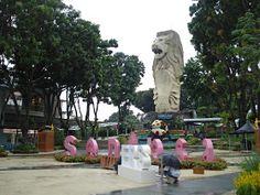 Biz :): Universal Studios Singapore Universal Studios Singapore, Dolores Park, Travel, Viajes, Destinations, Traveling, Trips
