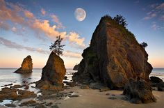A beautiful Moon at Ruby Beach, Olympic Peninsula, Washington Washington State, Washington Beaches, Olympia Washington, Ruby Beach Washington, Washington Camping, Issaquah Washington, Oh The Places You'll Go, Places To Travel, Evergreen State