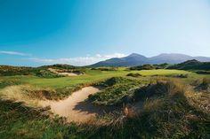 Ab Donnerstag rollt wieder der Golfball! | Wallgang: Alles zum Thema Golf aus einer Hand!