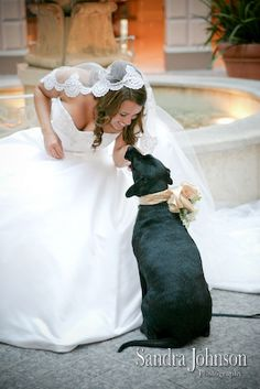 Every time I see a dog in a wedding it makes me wish our dogs would have been in our wedding.