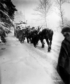 Paratroopers of the 82nd Airborne Division advance in a snowstorm behind a tank in a move to attack the village of Herresbach, Belgium - 28 December 1944