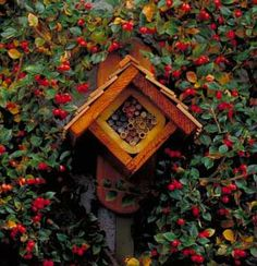 a shelter from the storm: Search results for mason bees Bug Hotel, Insect Hotel, Backyard House, Backyard Farming, Mason Bees, Bee House, Birds And The Bees, Beneficial Insects, Garden Terrarium